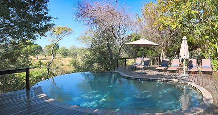 sabi-sand-elephant-plains-lodge-swimming
