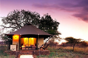 white-elephant-safari-lodge-luxury-safar