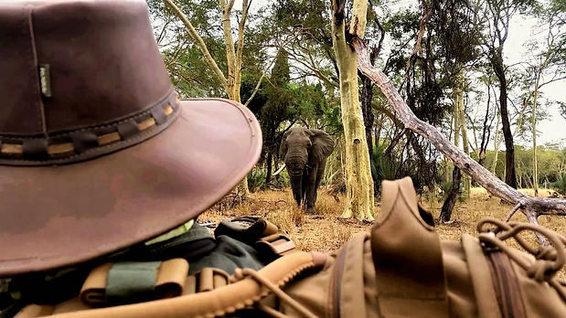 EcoTraining Ranger Experience Kruger Nat