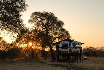 6.  Imvelo Safari Lodges - Image of your