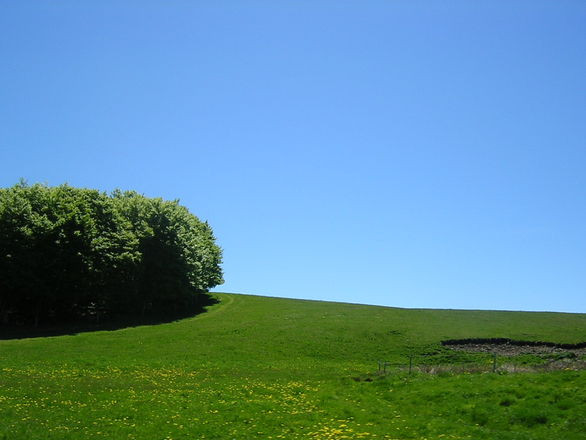 Blue Skies and Green Fields | French Holiday Gites