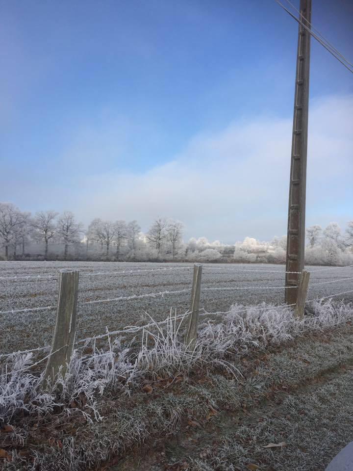 Winter at Gites Le Bisson   Hoar Frost