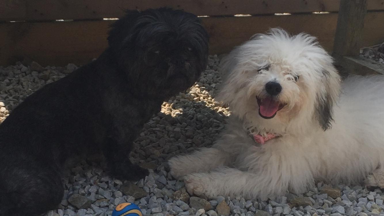 Missi & Lilli