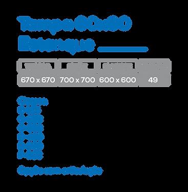 TAMPA 60X60.png