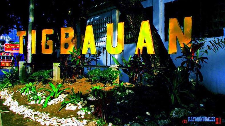Tigbauan1.jpg