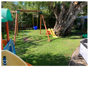 Climbing structure and swing