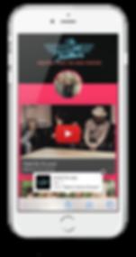 wild feathers musician progressive web app tapps