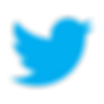 Twitter-icon2.png