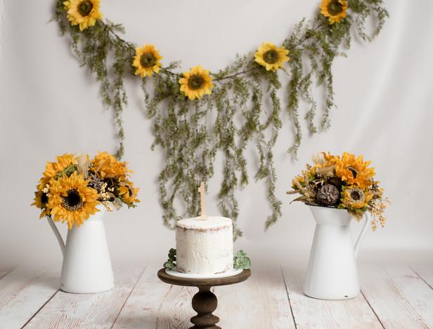 Cake smash Setups-9.jpg