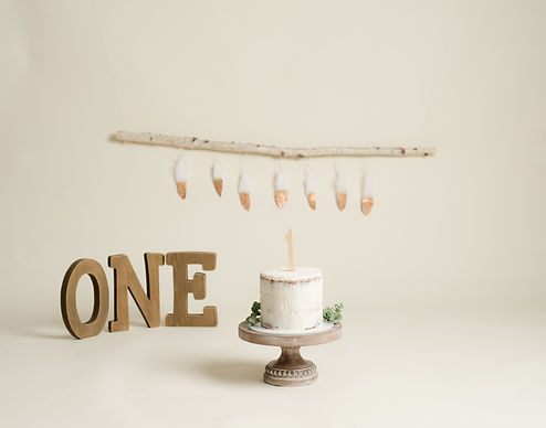Cake smash Setups-14.jpg