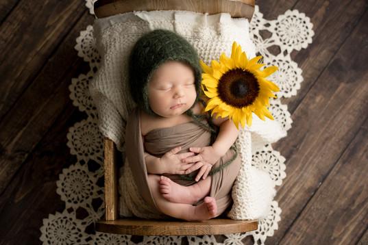 Arlington Texas Newborn Photographer   Crystal Wakeland Photography   Maternity Photographer  Pantego Texas Milestone Photographer