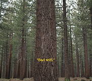 One Star Reviews - National Parks 4.png