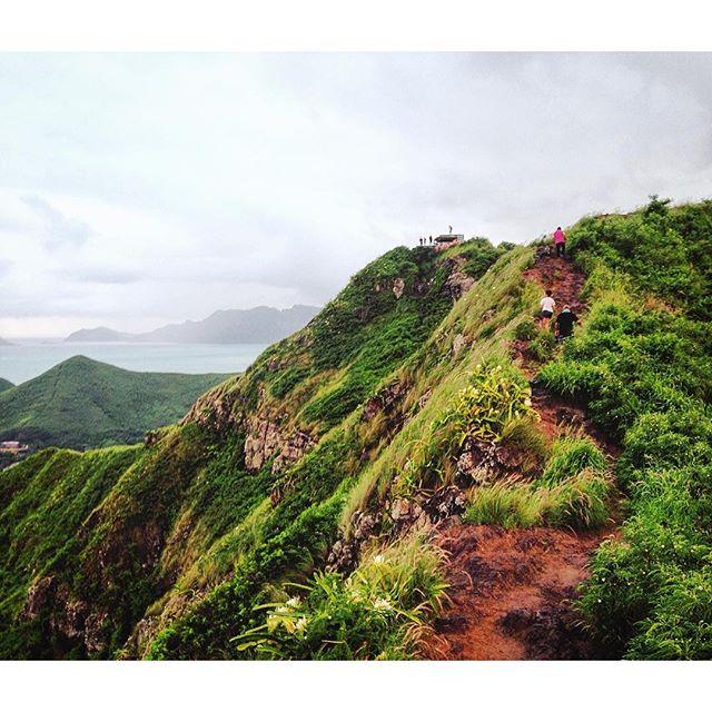 Moss-engulfed hills