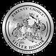 Parents Choice Silver .png