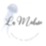 La_Méduse_logo.png