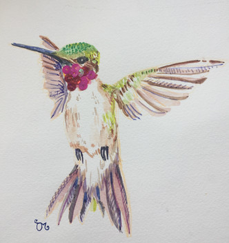 Huey the Hummingbird