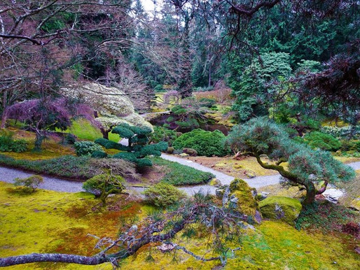 GORGEOUS WASHINGTON STATE GARDENS WORTH SEEING