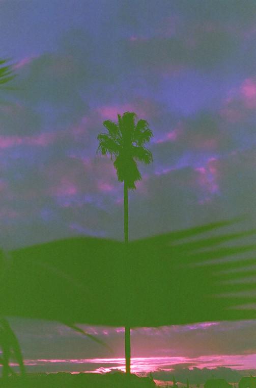 ghetto sunsets - benjamin fargen