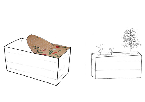 Delivered in a bamboo trough with peel off lid and instructions on the reverse.