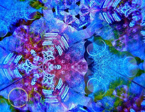 """Metamorphosis X"" by Anna Ng"