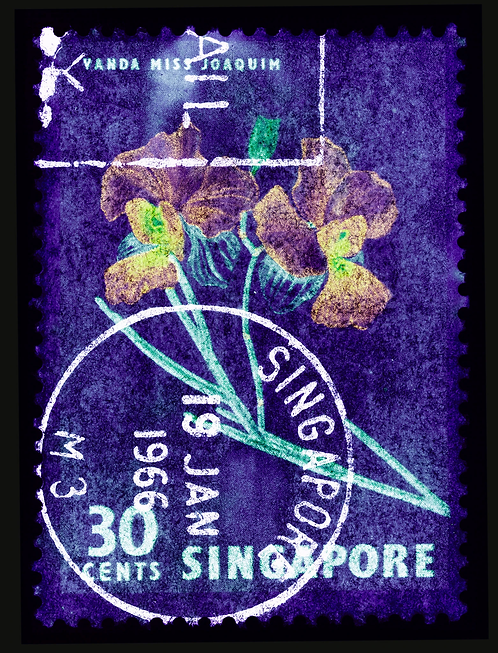 """""""Singapore Stamp Collection Orchid Series"""" by Heidler & Heeps"""