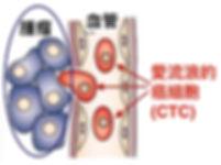 circulating tumor cell - figure 1.jpg