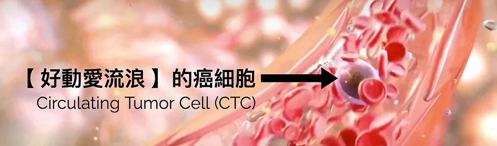 愛流浪 CTC.jpg