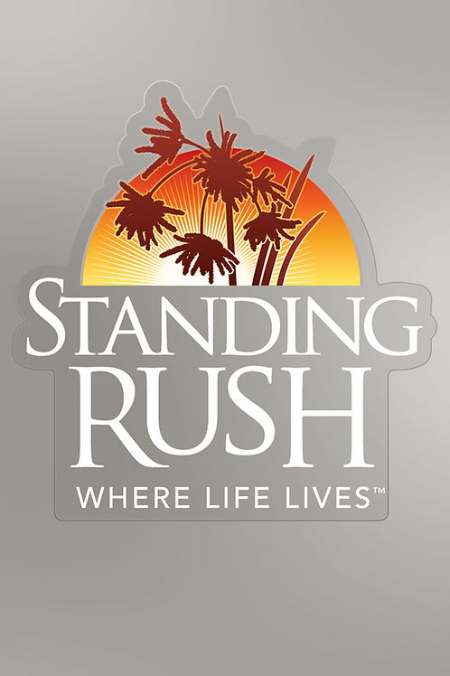 Standing Rush Logo Clear Decal