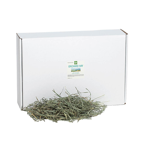 Small Pet Select - Orchard Grass