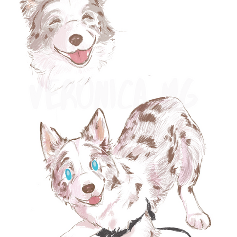 Fanny the dog concept