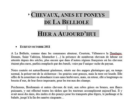 Capture Chevaux.PNG
