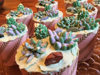Succulent Cacti Cupcakes