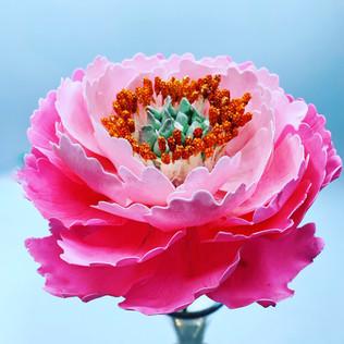 Handmade pink peony