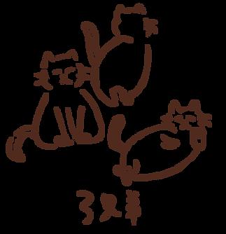 猫図鑑_三兄弟
