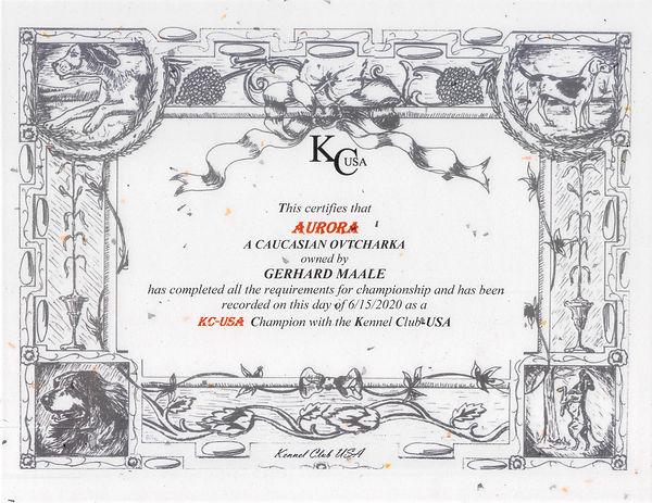 KC-USA AURORA CH JPEG.jpg