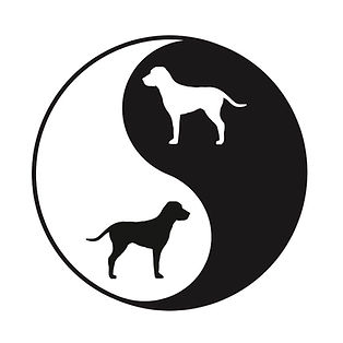 The Yin and Yang of dog training: with contrast training, we balance positive reinforcement of good behaviors with appropriate consequences for bad ones