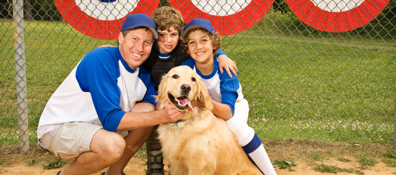 With dog training, your pet can fully participate in family life