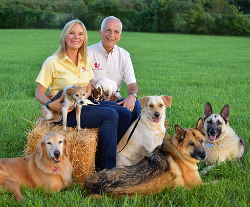 Ken & Lisa Baechtold, dog trainers, with their own pack