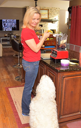 Your dog learns how to act in a home, because that's where our dog training takes place