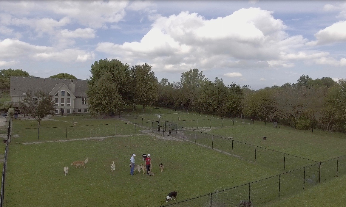 Our home/kennels & play yards