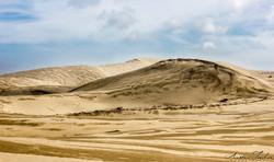 Reinga Dunes