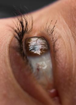 Laura Eye Reflection