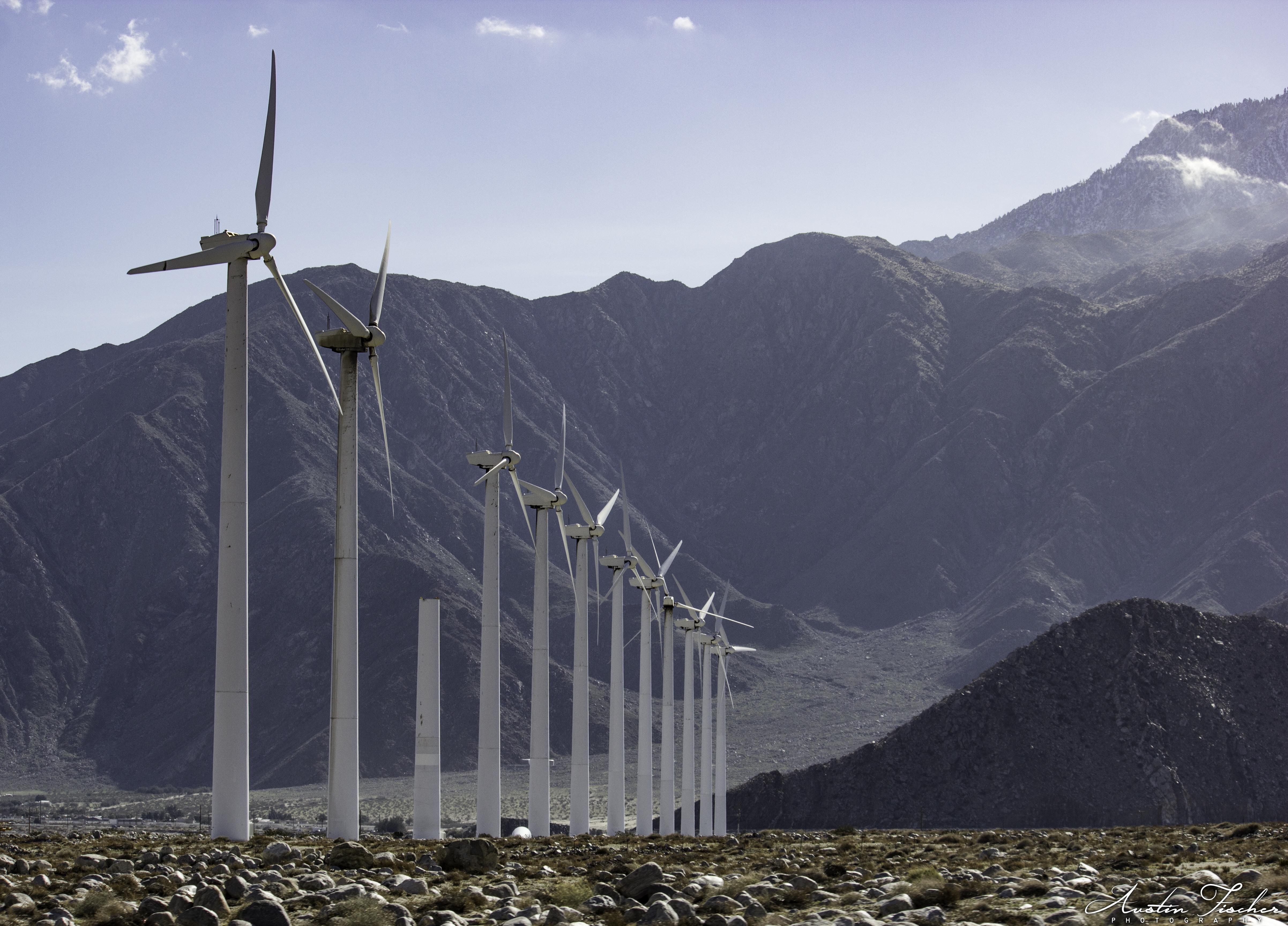 LA Wind Farm