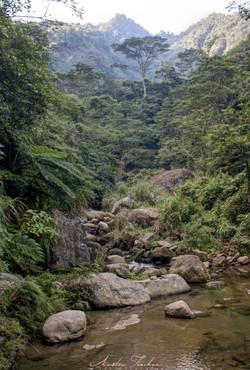 Fairy Falls Upstream 3