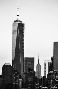 Freedom Tower and Empire State