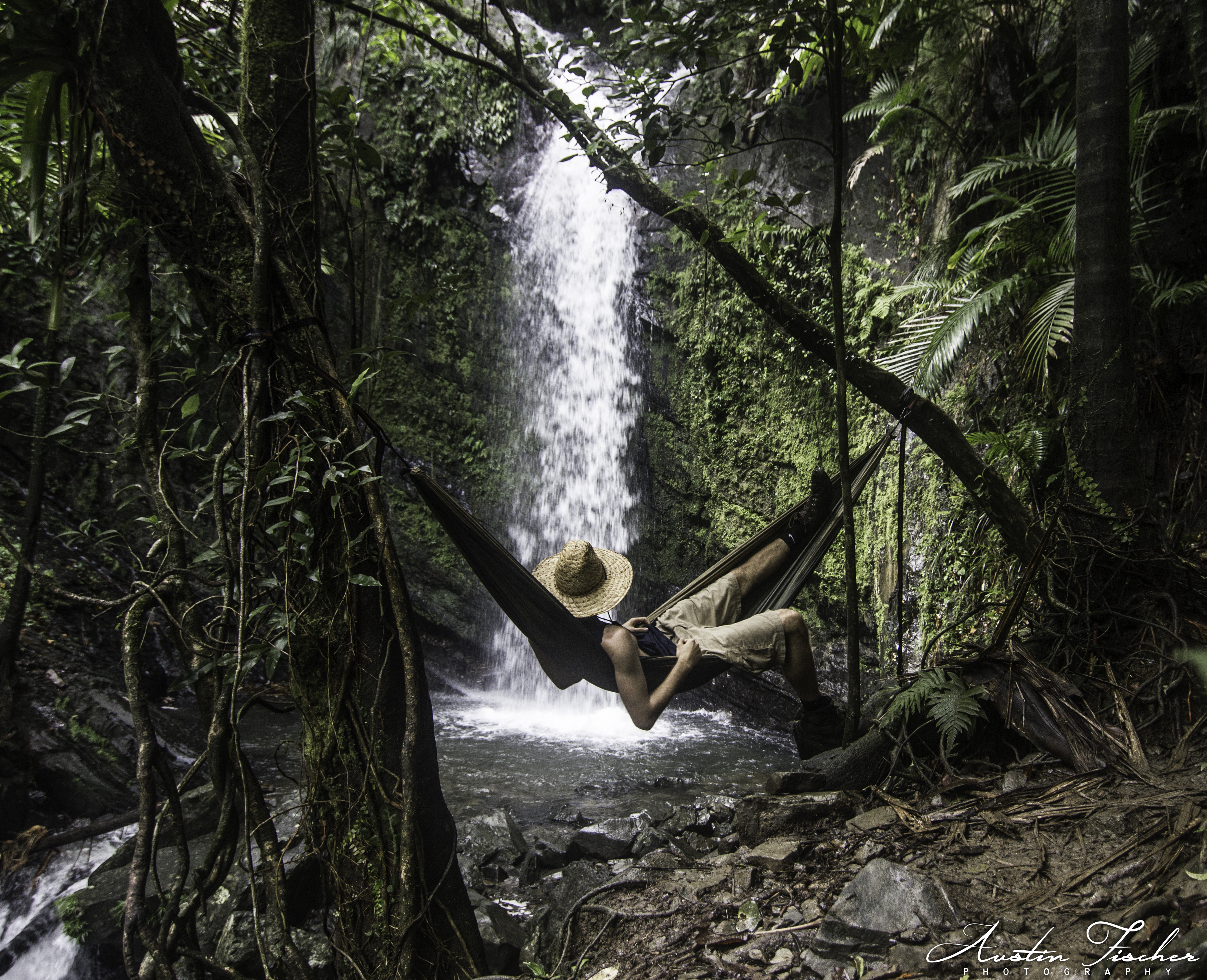 Juan Diego Falls Hammock
