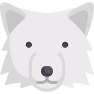 wolf (3).png