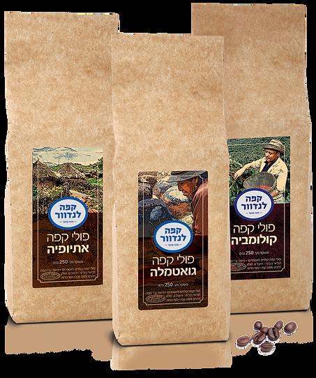 פולי קפה אתיופיה.png