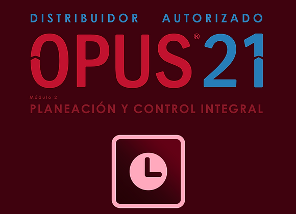 Módulo II Planeación y Control Integral OPUS21 (IVA no incluido)