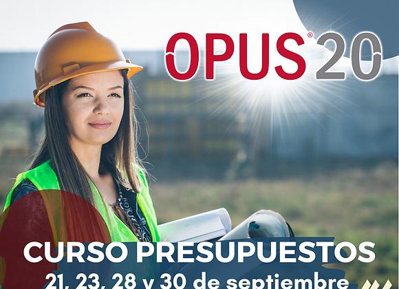 Curso en línea Opus20 Presupuesto Programable (IVA no incluido)